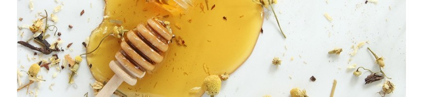 Wadi Shibam®'s Honeys